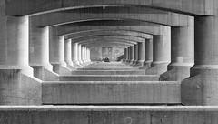 Sleep Symmetry (Ricky Reardon) Tags:                   bw blackandwhite photography hanriver ichon hangangpark seoul symmetry symmetrical bridge under yongsan sinyongsan tent sleeping camping stairs korea asia south southkorea