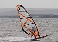 Aug20160a (Mike Millard) Tags: hamworthypark pooleharbour windsurfers