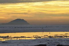 Icy Boundary Bay in the morning sun (glenbodie) Tags: glen bodie glenbodie dncb boundarybay 201349