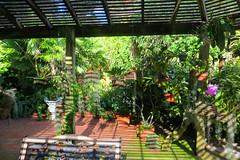 Key West (Florida) Trip 2015 7901Ri 4x6 (edgarandron - Busy!) Tags: florida keys floridakeys keywest keywestgardenclub