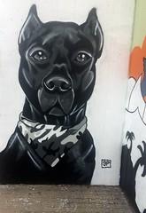 Portrait of a dog (falkmo) Tags: dobermann graffiti painting urban street art mural wall portrait hund dog schwarz black