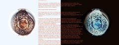 Verffentlichen (auch z.B.: auf flicker) heit, da jeder dazu Stellung nehmen kann. Verffentlichen und gleichzeitig sagen, es geht nur bestimmte Leute etwas an ist ein Widerspruch in sich .... (hedbavny) Tags: ffentlich public weis white milk milch milchstrase galaxy galaxie kosmos cosmos blau blue black schwarz red rot orange schrift letter buchstabe lesen read kaffeesatz tasse schale cup becher