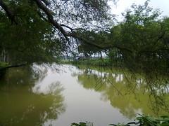 বেড়গোবিন্দপুর বাঁওড়
