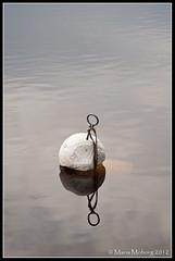 Boj (mmoborg) Tags: sweden sverige mmoborg mariamoborg buoyant