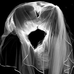 Wedding / Trouwfoto (♥siebe ©) Tags: wedding light bw holland art love netherlands dutch groom bride licht kiss couple veil zwartwit flash nederland lovers liefde 2012 huwelijk kus trouwen bruiloft verlichting sluier bruid bruidegom trouwfoto bruidsreportage pocketwizard trouwreportage bruidsfotografie bruidsfoto wwwmooietrouwreportagesnl