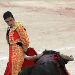 Mirame (Paolo Dallorso) Tags: plaza martin pages bull arena bullfight corrida toro crau