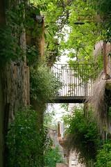 Vicolo stretto (Little Margie) Tags: campania case 1980 benevento rovine vicoli desolazione paese terremoto apicevecchia