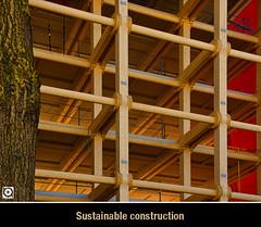 DSC00950 (Ricardo Gomez A) Tags: wood architecture construction arquitectura madera construccion architektur holz bau sustainable sostenible sontenible