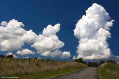 Cumulus Cloud - East Gresford,Hunter Region,NSW (Black Diamond Images) Tags: road clouds countryside australia cumulus nsw gresford cumulusclouds hunterregion australianlandscapes blackdiamondimages eastgresford