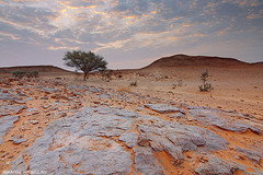 ( ibrahim) Tags: sky sun nature clouds sunrise canon landscape photography eos sand desert photos drought sands  ibrahim     50d     canon50d   tokina1116mm