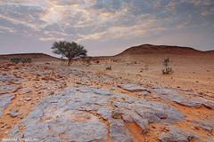 ( ibrahim) Tags: sky sun nature clouds sunrise canon landscape photography eos sand desert photos drought sands  ibrahim     50d     canon50d   tokina1116mm