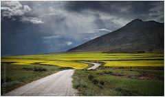 Paisaje (muliterno) Tags: campos losroyos