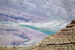 Grand Canyon Arizona (Song River- CowGirlZen Photography) Tags: california blue trees arizona cactus tree green bird nature animals rock pine cacti river utah ancient colorado god hiking grandcanyon nevada visit tourist canyon rafting coloradoriver land sevenwonders seventhwonderoftheworld cowgirlzenphotographygrandcanyon612