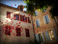 Fentres sur cour .... (kate053) Tags: flowers windows france flower window fleur fleurs lot fentre ville cahors sud volets fentres blinkagin
