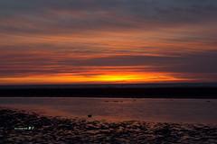 ~~ (Simon YEH ) Tags: sunset red summer sky cloud sun seascape beach nature water canon landscape interestingness  taipei   1635mm   550d earthasia mygearandme ringexcellence blinkagain flickrstruereflection1