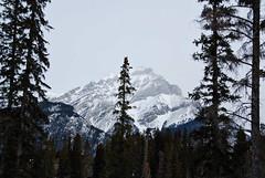 Banff vista 24 (afagen) Tags: winter canada alberta banff banffnationalpark