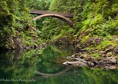Footbridge, Moulton Falls State Park (WA) (Robin Black Photography) Tags: park bridge blue trees reflection green water river foot mirror wooden washington aqua state footbridge ngc falls southern translucent lush naturesbest nationalgeographic lewisriver moulton eastfork outdoorphotographer canon5dmarkii robinblackphotography