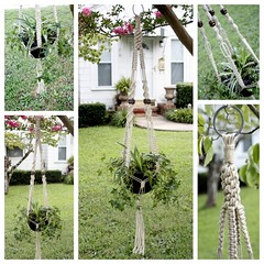 Woodland- Natural Hemp Handmade Macram Plant Hanger (Macramaking- Natural Macrame Plant Hangers) Tags: summer plants brown plant green coffee beauty hippies forest woodland garden beads basket herbs gardening handmade chocolate character cottage ivy funky deck zen hanging americana balance fengshui chic cheerful boho planter groovy hang bohemian homedecor hanger macrame fibers beachy hemp spiderplant detailed madeinusa woodsy ecofriendly accessory hangingbasket thewoodlands shabbychic hangingbaskets bohochic containergardening macram planthanger woodbeads airplaneplant alternating planthangers hangingplanter macramebeads decorativeknotting squareknots macrameplanthanger macramakin macramaking httpwwwetsycomshopmacramaking macramecord macrammacramaking macracord macrametechnique chinesecrownknots twistingsinnets macramehangingbasket macrameweaving macramelove