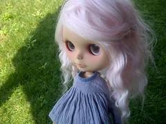 Piper dolly