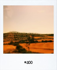 """#Dailypolaroid of 24-7-12 #300 • <a style=""""font-size:0.8em;"""" href=""""http://www.flickr.com/photos/47939785@N05/7638048842/"""" target=""""_blank"""">View on Flickr</a>"""