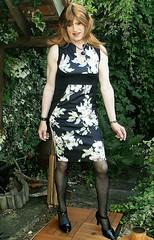 Not to Waste (Amber :-)) Tags: pencil dress crossdressing tgirl transvestite