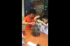 Making a giant terrarium with Poh Poh (Stinkee Beek) Tags: teckgheeprimaryschool ma ethan