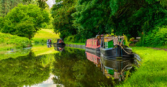 If You Have To Tie-Up For The Night I Can Think Of Worse Places (williamrandle) Tags: hydelock reflections peaceful serene beauty narrowboat boat canallocks kinver stourton staffordshireworcestershirecanal canal staffordshire westmidlands uk england summer 2016 outdoor landscape trees plants green nikon d7100 tamron2470f28vc