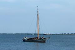 Yacht On Kinselmeer, North Holland 2 (elhawk) Tags: northholland northamsterdam kinselmeer boats yacht