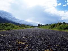 Misty Road (Pinksterbos) Tags: azoren pico portugal summer road misty fog cloud sky clouds landscape