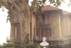 On film in 1997 Frdric Mistral in Orange (oberondilettante) Tags: provence orange vaucluse writer felibrige sculpture crivain buste villa bust frdricmistral pellicule filmprocessed argentique