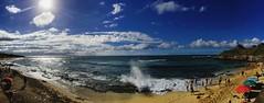 (Monarch-Photography) Tags: sand ipad sexy women windsurfing tsunami surfing paradise friend ocean beach friends heaven aloha fun hot beautiful surf waves iphone maui bikini sun panorama pacific sunset palmtree girls hawaii sunrise