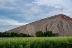 Neues Leben - New life (ralfkai41) Tags: bume trees abraum landscape landschaft neuesleben rubbish miningwaste newlife natur halde