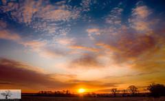 Cardington Sunrise Cloudscape (Rob Felton) Tags: cardington bedford bedfordshire robertfelton felton sun silhouette sunrise light lumen cloud tree cloudscape clouds goldenhour treeline