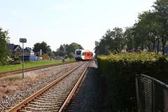 IMG_4014-www.PjotrWiese.nl