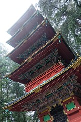Nikko Toshogu VII (Douguerreotype) Tags: pagoda nikko rain buddhist buildings mist shrine temple architecture red japan