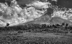 Mayon's Majesty (FotoGrazio) Tags: freetodownload composition nature photographersinsandiego fotograzio summit digitalphotography capture majestic waynegrazio photography photographicart sky mayonvolcano freeimage landscape waynesgrazio freepicture photoshoot contrast legazpi californiaphotographer volcano explore clouds sandiegophotographer albay philippines bicol worldphotographer beautiful downloadforfree artofphotography flickr 500px internationalphotographers photographersincalifornia scenic blackandwhite tropical pinnacle