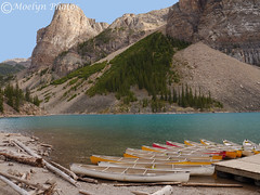 Moraine Lake Canoe Dock (moelynphotos) Tags: lakemoraine lake glaciallake banffnationalpark nationalpark lakeshore watersedge canoes dock logs driftwood mountains peaks glacial silt touristdestination scenics beautyinnature walkingpath canada boating outdoors landscpaeformat blue green colorful hiking valleyofthetenpeaks