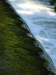 spiraled water (pshab) Tags: denhamcountrypark