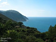 (Linayum) Tags: acantilado mar water agua sea nature naturaleza rbol tree galicia spain espaa beautiful sanandrsdeteixido linayum