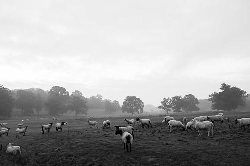 Warwickshire ©  Still ePsiLoN