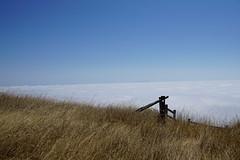 Mount Tamalpais: Rock Spring to Stinson Beach Hike (4) (Planet Q) Tags: mttam marinheadlands