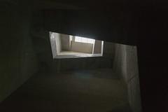_DSC9517 (sayots) Tags:   saitama kasukabe japan  stairs