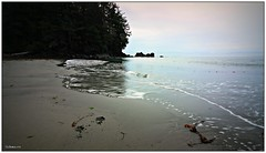 (CanMan90) Tags: frenchbeach sand water ocean trees longexposure shirley vancouverisland britishcolumbia reflections cans2s canon rebelt3i seascape outdoors
