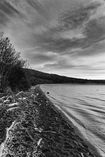 Lake Coastline of Naknek