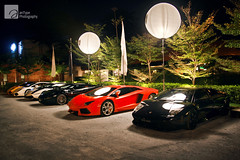 We Are The Night (anType) Tags: italy orange white black sports car yellow italian asia sl exotic malaysia kualalumpur lamborghini luxury coupe supercar v8 gallardo sportscar murcielago v12 lambo superleggera murci bicolore lp640 hypercar worldcars lp5604 giallomidas aventador lp5704 neronoctis lp7004 arancioargos biancocanopus