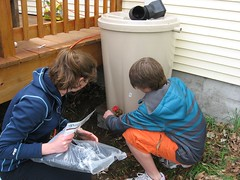 IMG_4146 (G.A.L.A.) Tags: gala rainbarrel compostbin solarclothesdryer 42412 amtp raisedgardenbed sustainaraiser