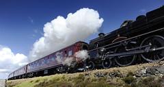 Harry Potter Train - Mallaig, Schottland