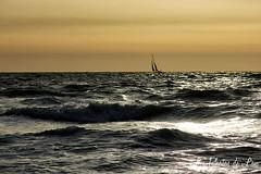 Le soleil se lve... (Les Photos de Lau) Tags: vagues voilier pyrnes mditerrane orientales canon60d