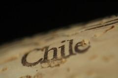 Vinos Chilenos (Alberto Ruggiero) Tags: chile macro via wine winery grape syrah vino malbec cabernet sauvignon carmenere marlot