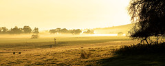 Foggy morning (Andrew Fleming Photography) Tags: windmill fog sunrise australia andrew victoria hills dookie fleming andrewfleming goulburnvalley centralvictoria greatershepparton